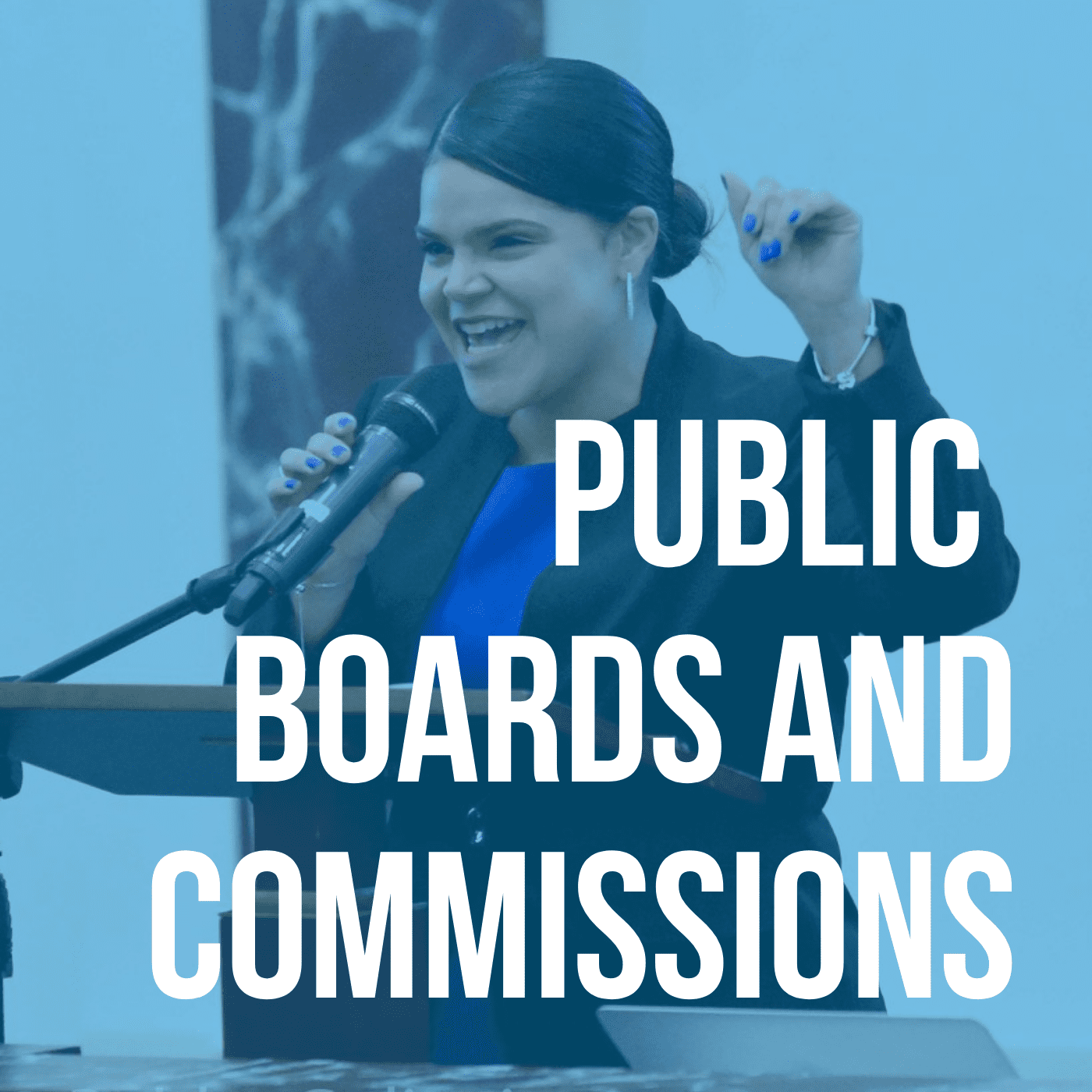 PUBLIC BOARDS AND COMMISSIONS